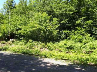 Photo 5: Meiklefield Road in Meiklefield: 108-Rural Pictou County Vacant Land for sale (Northern Region)  : MLS®# 202117504
