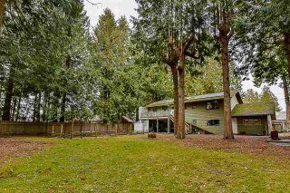 Photo 15: 12750 60 Avenue in Surrey: Panorama Ridge House for sale : MLS®# R2149288