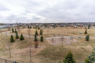Photo 36: 214 278 SUDER GREENS Drive in Edmonton: Zone 58 Condo for sale : MLS®# E4241668