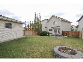 Photo 7: 230 CRANBERRY Close SE in Calgary: Cranston House for sale : MLS®# C4063122