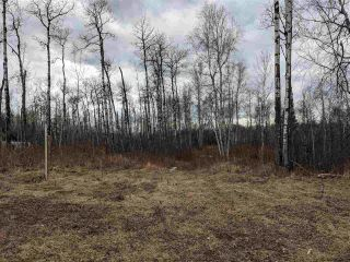Photo 7: 23 53524 RGE RD 275: Rural Parkland County Rural Land/Vacant Lot for sale : MLS®# E4228042