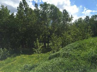 Photo 6: 63 Rolling Acres Place in Rural Rocky View County: Rural Rocky View MD Land for sale : MLS®# A1048853