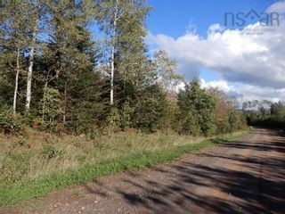 Photo 6: Lot 4 Rod MacKay Road in Central West River: 108-Rural Pictou County Vacant Land for sale (Northern Region)  : MLS®# 202124895