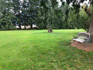 Photo 10: 6635 CHADSEY Road in Sardis - Greendale: Greendale Chilliwack House for sale (Sardis)  : MLS®# R2575603
