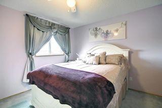 Photo 18: 8014 15A Avenue in Edmonton: Zone 29 House for sale : MLS®# E4265979
