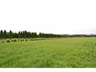 """Photo 12: 7200 216TH Street in Langley: Willoughby Heights Land for sale in """"Milner"""" : MLS®# F1411651"""