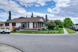 Photo 3: 217 Templemont Drive NE in Calgary: Temple Semi Detached for sale : MLS®# A1120693