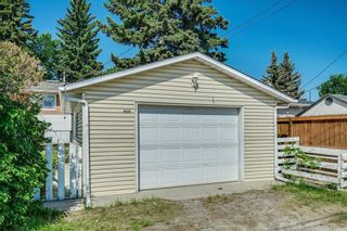 Photo 33: 5920 BUCKTHORN Road NW in Calgary: Thorncliffe Detached for sale : MLS®# C4172366