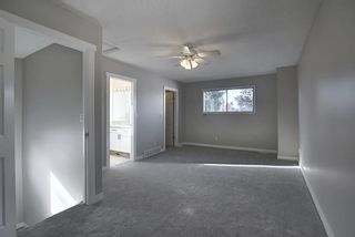 Photo 20: 1419 31 Street SW in Calgary: Shaganappi Detached for sale : MLS®# A1063406