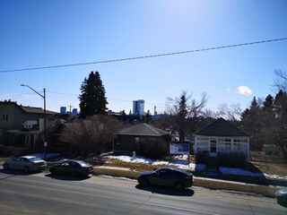 Photo 22: 1314 20 Avenue NW in Calgary: Capitol Hill Detached for sale : MLS®# A1080077