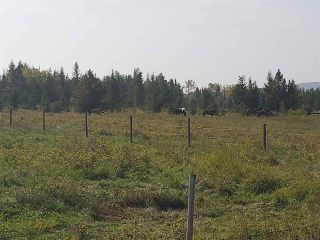 Photo 9: 20035 CARIBOO Highway: Buckhorn House for sale (PG Rural South (Zone 78))  : MLS®# R2499892
