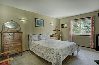 Photo 14: 14 Crystal Ridge Cove: Strathmore Semi Detached for sale : MLS®# A1142513