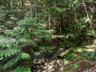 Photo 22: 5999 FORBIDDEN PLATEAU ROAD in COURTENAY: CV Courtenay West House for sale (Comox Valley)  : MLS®# 787510