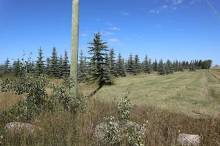 Photo 11: Hwy 622 RR 15: Rural Leduc County Rural Land/Vacant Lot for sale : MLS®# E4261453