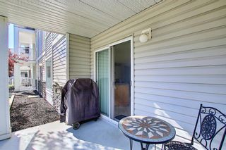 Photo 22: 105 5105 Valleyview Park SE in Calgary: Dover Apartment for sale : MLS®# A1138950