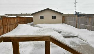 Photo 28: 146 CRANBERRY Close SE in Calgary: Cranston House for sale : MLS®# C4166385