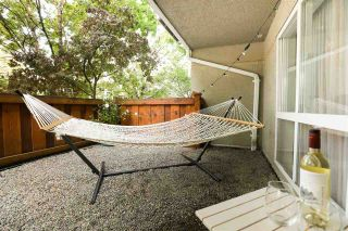 "Photo 4: 103 1570 PRAIRIE Avenue in Port Coquitlam: Glenwood PQ Condo for sale in ""VIOLAS"" : MLS®# R2498060"