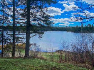 Photo 6: 10 Rush Bay Road in Township of Boys: Recreational for sale : MLS®# TB210791