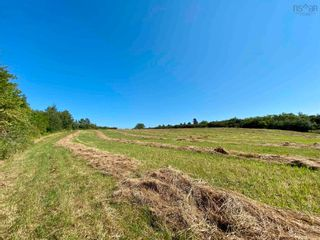 Photo 15: 11.6 acres East Tracadie Road in East Tracadie: 301-Antigonish Vacant Land for sale (Highland Region)  : MLS®# 202122282