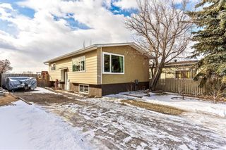 Photo 21: 420 SPRING HAVEN Court SE: Airdrie Detached for sale : MLS®# C4289302
