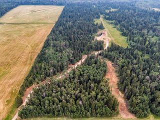 Photo 21: 31339 Rge Rd 55: Rural Mountain View County Land for sale : MLS®# A1136736