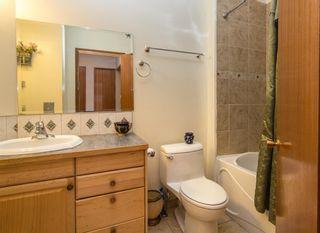 Photo 15: 3768 36 Avenue SW in Calgary: Rutland Park Semi Detached for sale : MLS®# A1148996