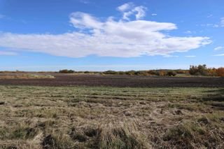 Photo 4: TWP 491 RR 273: Rural Leduc County Rural Land/Vacant Lot for sale : MLS®# E4264523