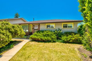Photo 28: 99 Franklin Drive in Calgary: Fairview Detached for sale : MLS®# A1121296