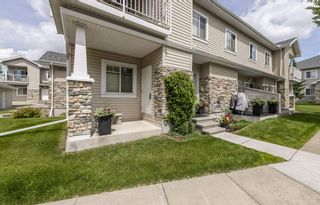 Photo 31: 52 2508 HANNA Crescent in Edmonton: Zone 14 Carriage for sale : MLS®# E4205917