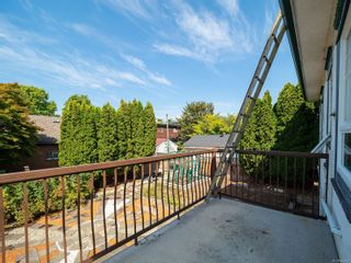 Photo 17: 238 Beechwood Ave in : Vi Fairfield East House for sale (Victoria)  : MLS®# 854081