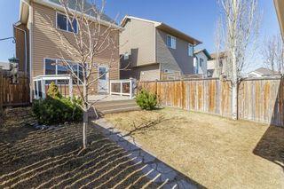 Photo 28: 27 Auburn Bay Manor SE in Calgary: Auburn Bay Detached for sale : MLS®# A1073937