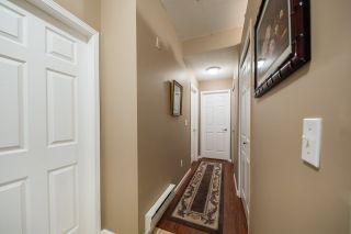 Photo 5: 104 11519 BURNETT Street in Maple Ridge: East Central Condo for sale : MLS®# R2174212