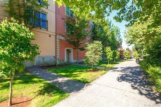 Photo 26: 316 1620 McKenzie Ave in VICTORIA: SE Lambrick Park Condo for sale (Saanich East)  : MLS®# 792600