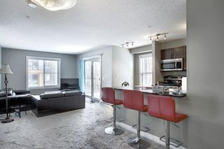 Photo 14: 1214 1317 27 Street SE in Calgary: Albert Park/Radisson Heights Apartment for sale : MLS®# A1070398