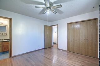 Photo 18: 317 Big Springs Court SE: Airdrie Detached for sale : MLS®# A1152002