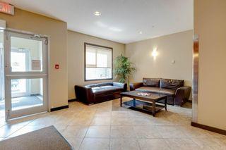 Photo 33:  in Edmonton: Zone 56 Condo for sale : MLS®# E4255682