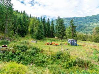 Photo 50: 5980 HEFFLEY-LOUIS CREEK Road in Kamloops: Heffley House for sale : MLS®# 160771
