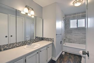 Photo 18: 155 Templevale Road NE in Calgary: Temple Detached for sale : MLS®# A1119165