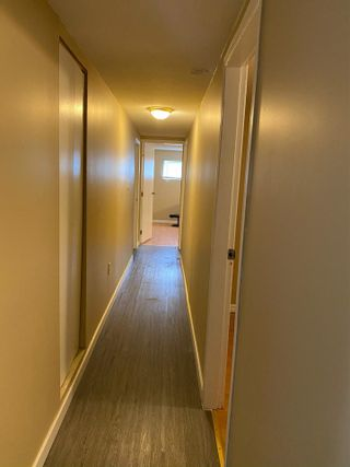 Photo 14: 119 FELL Avenue in Burnaby: Capitol Hill BN House for sale (Burnaby North)  : MLS®# R2546957