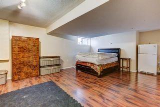 Photo 22: 181 Saddlecreek Point NE in Calgary: Saddle Ridge Detached for sale : MLS®# A1124301