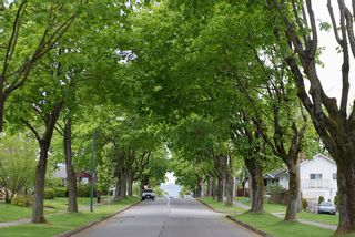 Photo 21: 3504 Turner Street in Vancouver: Home for sale : MLS®# V1064126
