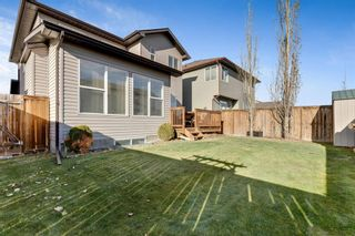 Photo 31: 389 Evanston View NW in Calgary: Evanston Detached for sale : MLS®# A1043171