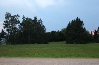 Photo 2: 5 Avenue Princess Street: Elnora Land for sale : MLS®# A1022937