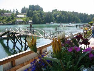 Photo 6: Lot 3 Crane Road: Bamfield Land for sale (Vancouver Island)  : MLS®# 397584