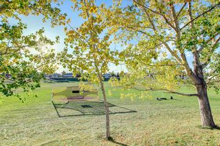 Photo 38: 129 Coral Shores Bay NE in Calgary: Coral Springs Detached for sale : MLS®# A1151471