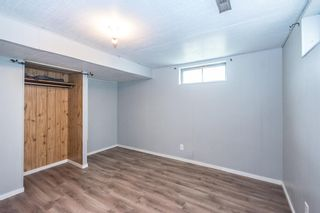 Photo 38: 3005 DOVERBROOK Road SE in Calgary: Dover Detached for sale : MLS®# A1020927