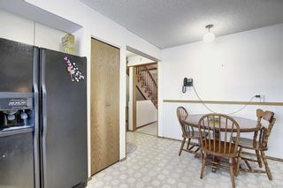 Photo 14: 3711 39 Street NE in Calgary: Whitehorn Detached for sale : MLS®# A1063183