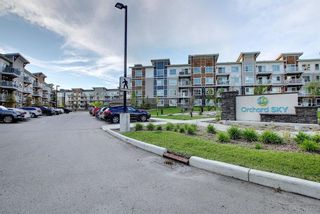 Photo 32: 3205 302 Skyview Ranch Drive NE in Calgary: Skyview Ranch Apartment for sale : MLS®# A1077085