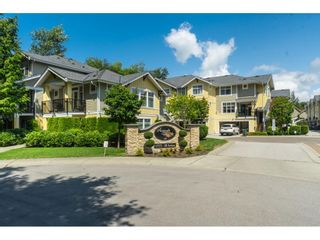 """Photo 1: 19 17171 2B Avenue in Surrey: Pacific Douglas Townhouse for sale in """"Augusta"""" (South Surrey White Rock)  : MLS®# R2390213"""