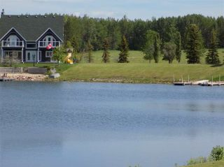 Photo 5: 1 SUNSET HARBOUR: Rural Wetaskiwin County Rural Land/Vacant Lot for sale : MLS®# E4161228